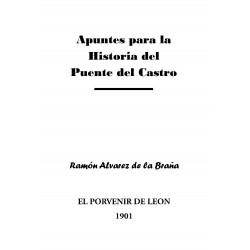 Apuntes para la historia del Puente del Castro