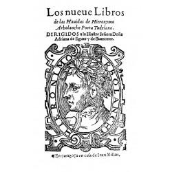 Los nueve libros de las Havidas