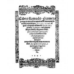 Libro llamado de la fiameta